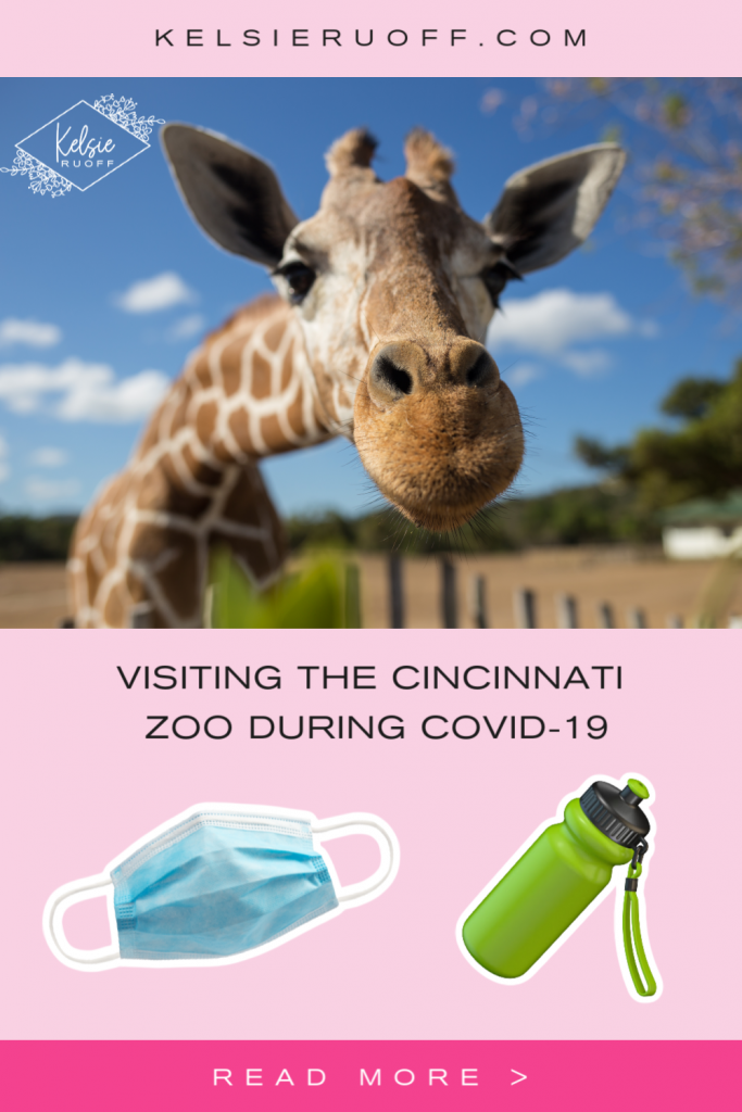 Cincinnati Zoo During COVID-19 Pin